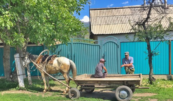 horse and cart with two men in Kazakhstan Overland Journeys tour